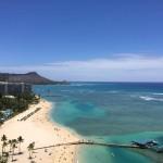 ハワイアン・ランチパーティのお知らせです!