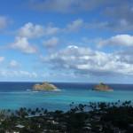 第13回 ハワイアン・ティーパーティのご案内